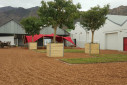 Museum Art Gallery - Montagu Attractions