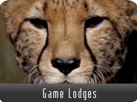 Game Lodges